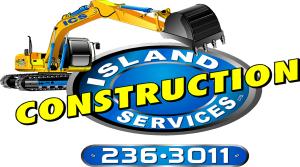 logo-ICS (1)